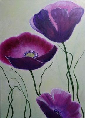 50 x 70 | fleurs mauves