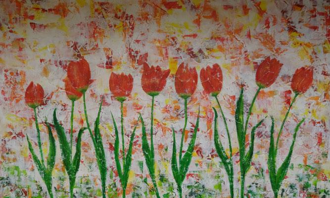 80 x 50   Tulpen im Garten
