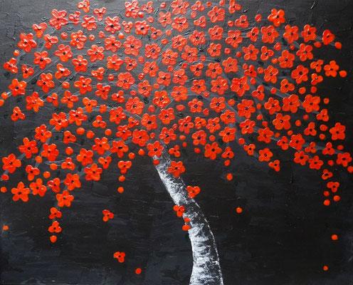 50 x 40 | in voller Blüte