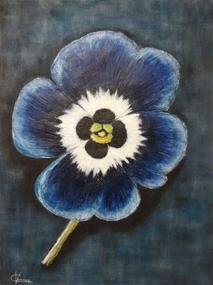 60 x 80 | pensée bleue