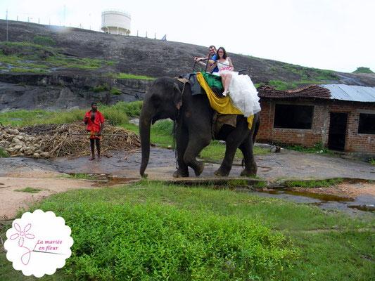 Ballade à dos d'éléphant en robe de mariée pour la mariée en fleur avec son bouquet éventail