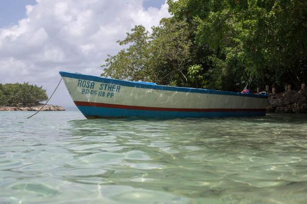 Strandlandschaft (Dominikanische Republik)