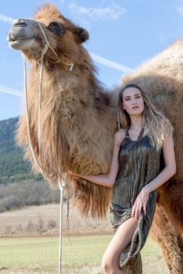 Michelle /Achmed, photo: Anna Grünauer, Kamele Österreich