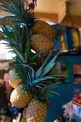 frische Ananas, Anna Grünauer