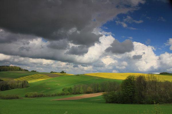 Lindl Hannes, Burgenländische Hügellandschaft