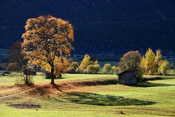 KUEN Andreas, Herbstlandschaft in Strad 1