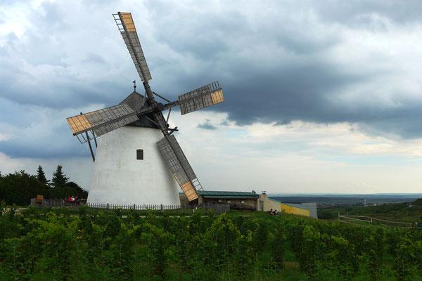 © Werner Staudner, die Retzer Windmühle