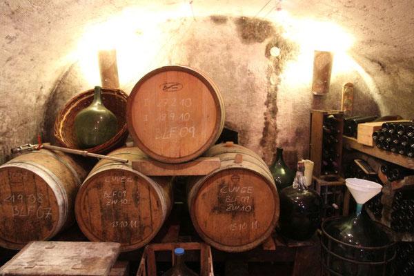 Lorenz Josef, Der Weinkeller