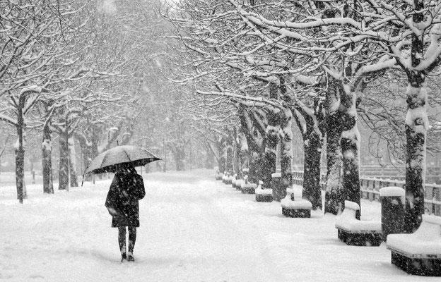 WIDMER Beda, Schneefall in Bregenz