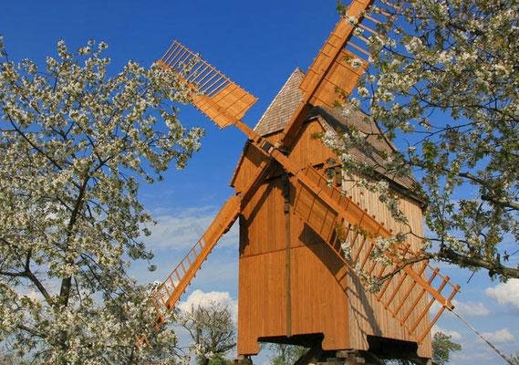 Bockwindmühle-Lumpzig.de