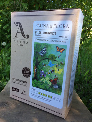 Wildblumenwiese für feucht-schattige Standorte