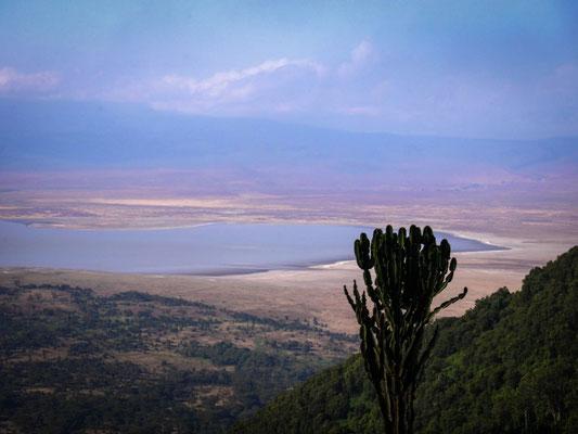 Le cratère du N'Gorongoro