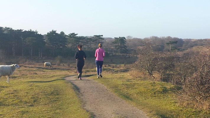 Bij runningtherapie  lopen we in de duinen en krijg je 1 op 1 coaching afgestemd op jouw niveau en doelstelling
