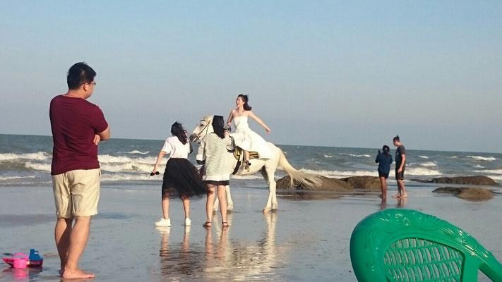 Hochzeitsfotos auf dem Pferd.
