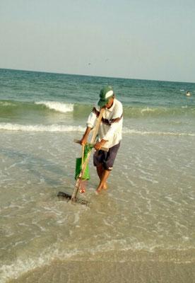 Mit einem Rechen wird der Sand aufgewühlt und nach Muscheln gesucht.