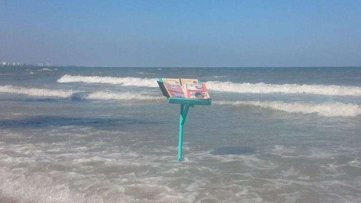 Hier wird beim Strandlauf ein Zwischenstopp gemacht.