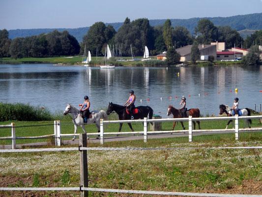 Balade à cheval le long des berges du lac de Madine