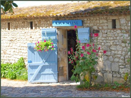 Boutique dans une ruelle à Talmont-sur-Gironde (Charente-Maritime)