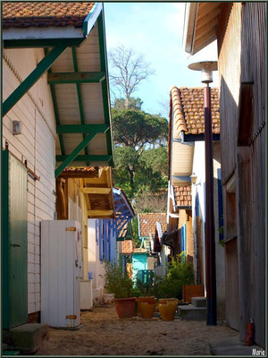 Ruelle remontant de la plage, village de L'Herbe, Bassin d'Arcachon (33)