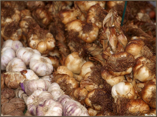 Etal condiments et fruits secs, cordes ail, noix et noisettes, Fête au Fromage, Hera deu Hromatge, à Laruns en Vallée d'Ossau (64)