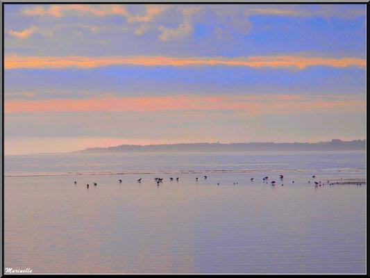 Coucher de soleil sur le Bassin à Arcachon (Bassin d'Arcachon)