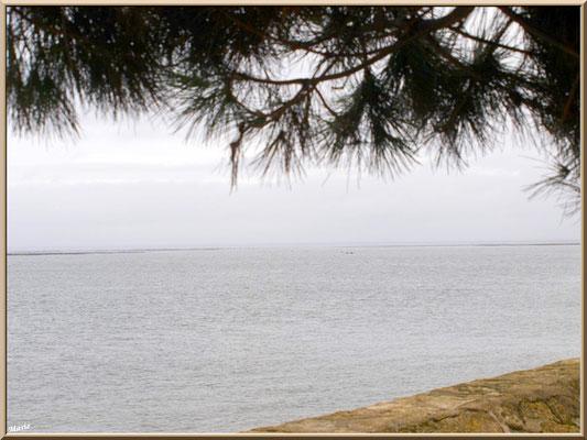 """Arcachon, """"Ville d'Automne"""" depuis la jetée du port de plaisance, côté Bassin"""