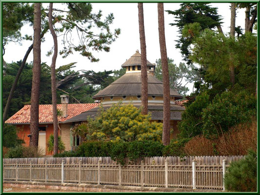 Belle maison avec dome et mimosas en bordure de la conche (Cap Ferret)