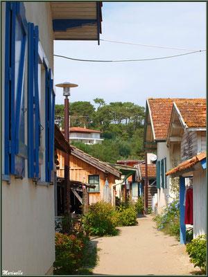 Ruelle, Village de L'Herbe, Bassin d'Arcachon (33)