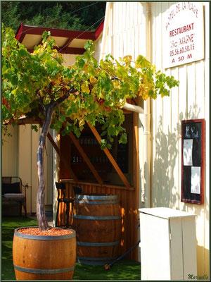 L'Hôtel de la Plage au Village de L'Herbe, le bar extérieur en été, Bassin d'Arcachon (33)
