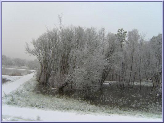 Les prés salés Ouest de La Teste de Buch sous la neige en décembre 2010 (Bassin d'Arcachon)