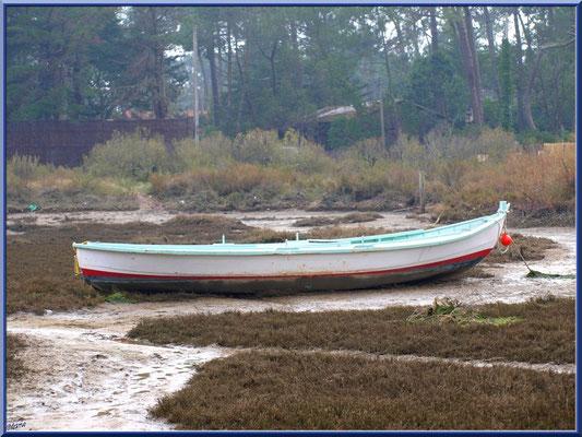 Barque dans la conche à marée basse dans la brume (Cap ferret)