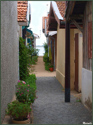 Ruelle dans le Village de L'Herbe, Bassin d'Arcachon (33)