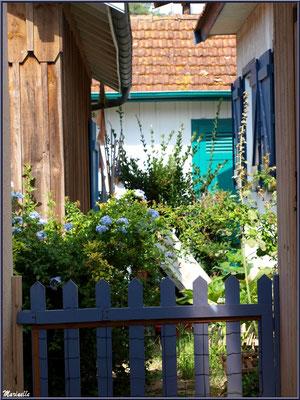 Maisons fleuries dans une ruelle, village de L'Herbe, Bassin d'Arcachon (33)