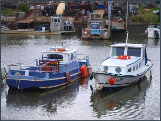 Bateaux chalands au mouillage dans le port ostréicole de La Teste de Buch (Bassin d'Arcachon)