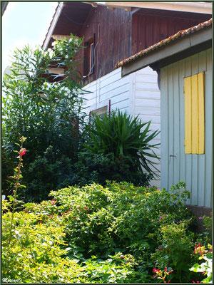 Végétation luxuriante devant une maison, Village de L'Herbe, Bassin d'Arcachon (33)