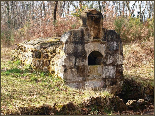 La Fontaine Saint Jean à Lamothe, Commune du Teich (Bassin d'Arcachon) - photo prise en hiver