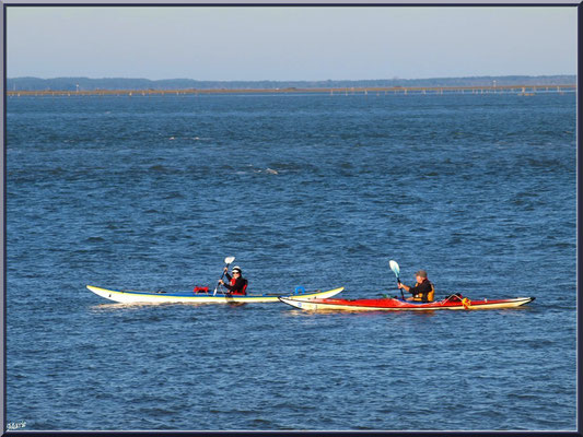 """Canoës sur le Bassin, vue depuis le front de mer de la """"Ville d'Eté"""" à Arcachon"""