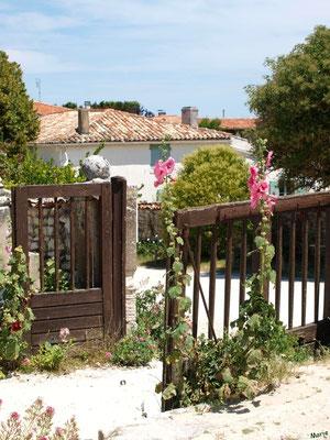 Portail du cimetière marin ou ancien cimetière à Talmont-sur-Gironde (Charente-Maritime) à la saison des valérianes (courant juillet)