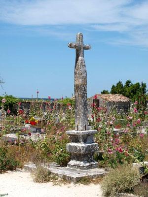 Le cimetière marin ou ancien cimetière à Talmont-sur-Gironde (Charente-Maritime) à la saison des roses trémières (courant juillet)