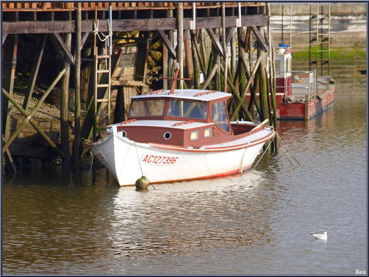 Pinasse et bateau chaland à quai
