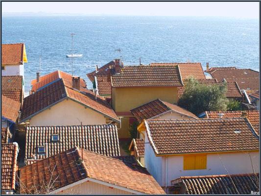 Village vu des hauteurs et  le Bassin, village de L'Herbe, Bassin d'Arcachon (33)