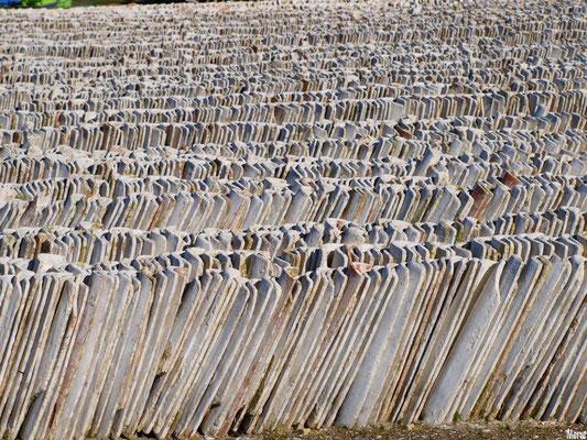 Tuiles alignées et rangées sur un quai au port ostréicole d'Andernos-les-Bains (Bassin d'Arcachon)