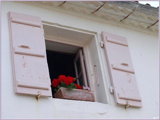Fenêtre aux géraniums à Talmont-sur-Gironde (Charente-Maritime)