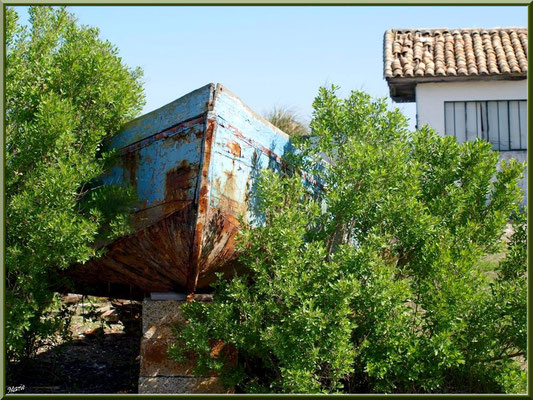 Cabane au vieux bateau