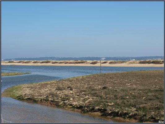 """""""Le Mimbeau"""" (Cap ferret) et Arcachon à l'horizon"""