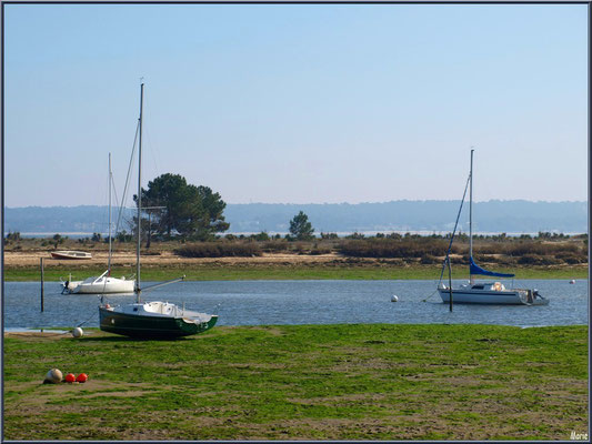"""""""Le Mimbeau"""" et ses bateaux (Cap Ferret)"""