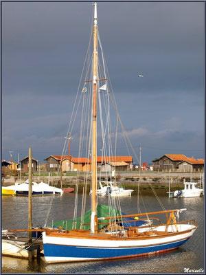 Argo II, réplique d'un canot sardinier, à quai