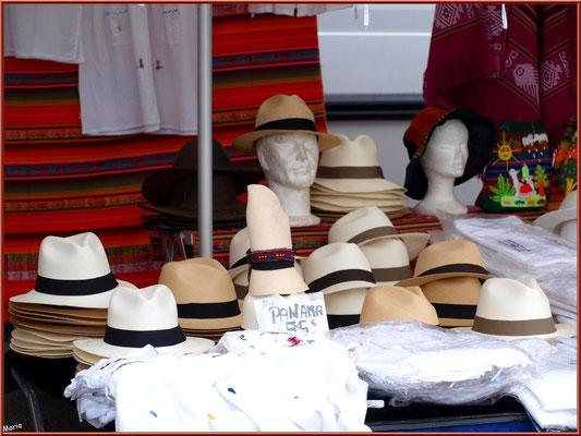 Marché de Provence, mardi matin à Vaison-la-Romaine, Haut Vaucluse (84), étal de panamas et vêtements