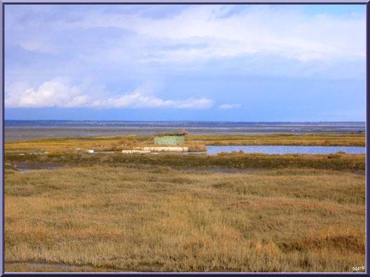 Tonne et son lac dans les prés salés