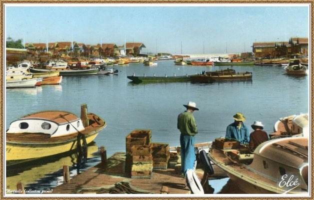 Gujan-Mestras autrefois : Ostréiculteurs au travail dans la darse principale du Port de Larros, Bassin d'Arcachon (carte postale - version couleur 2, collection privée)